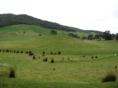 drumlin glacial hill on Alexander Farm
