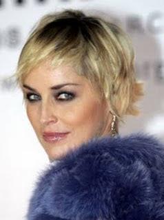 http://4.bp.blogspot.com/_uUR1DUyvNT4/TGEricJfWUI/AAAAAAAAAnk/bv-lua-6soM/s320/Best+Short+Celebrity+Hair+Style+Sharon+Stone+2010.jpg