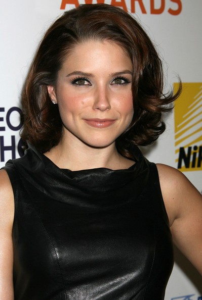 Modern Celebrity Sophia Bush Popular Prom Hairstyles 2010