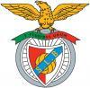 Associação - Academia Futebol Quinta do Pinheiro - Nucleo Sport Lisboa e Benfica