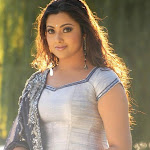 Hot Tamil Actress Meena Sexy Photo Gallery