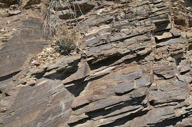 Licorella soil - Priorat