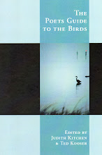 "The Poets Guide To The Birds - an anthology, includes a poem by Nancy Simpson-""Carolina Bluebirds"""