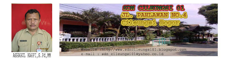 SDN CILEUNGSI 01