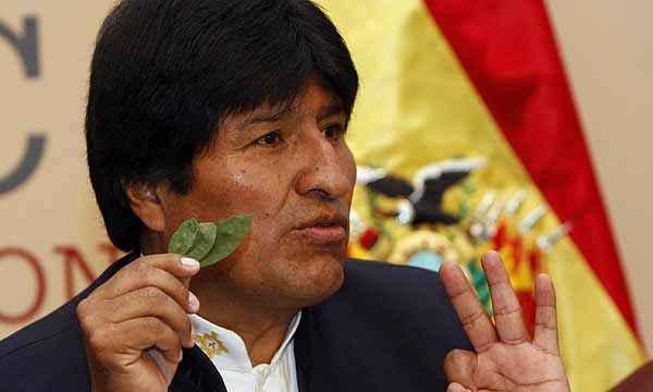 impact of evo morales and the cocaleros in bolivia 13102016 probablemente evo morales, el líder de los cocaleros, nunca hubiese llegado a ser presidente de bolivia evo morales  impact: project zero.