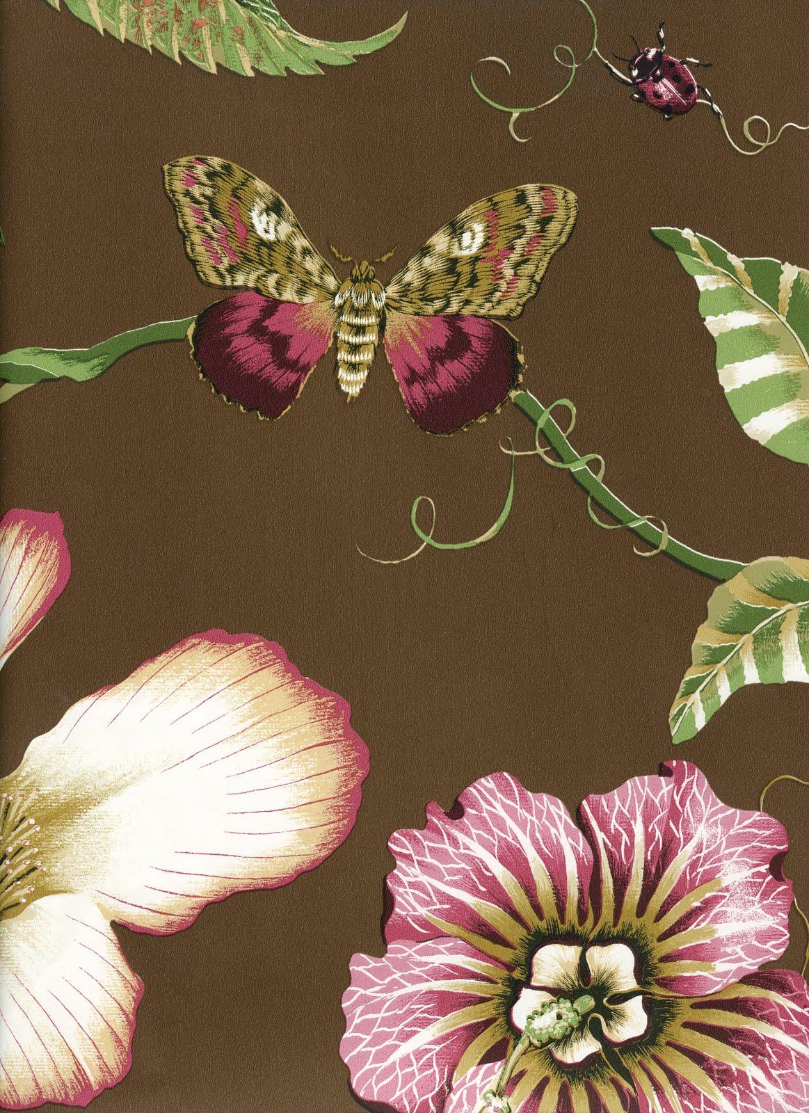 http://4.bp.blogspot.com/_u_EV8KxyKwY/S7ofQ4r8H_I/AAAAAAAAACw/cgVkbIn0cw0/s1600/Raia+wallpaper.jpg