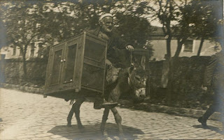 porter and his donkey in Istanbul