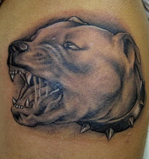 Mean Pit Bull Terrier attack Dog Tattoo