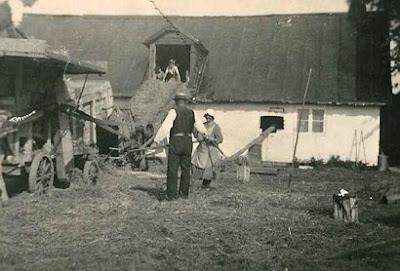 Omrejsende tærskeværk hos Anne og Peter Larsen, Renge