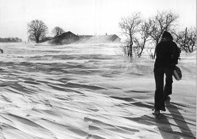 Fygning ved Storemark 1979 - klik for større billede