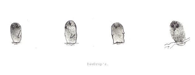 dewdrop's