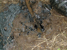 Chevron's Oil on the Ground Ecuador