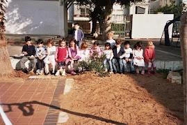 עץ הזית בחצר:ילדי הגן בחטיבה הצעירה תל-נורדאו לומדים על עץ הזית