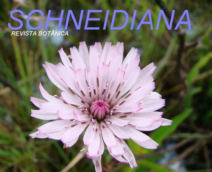 Schneidiana