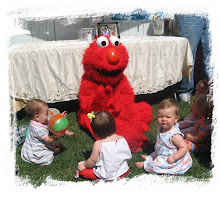Elmo visits with Elana's guests.