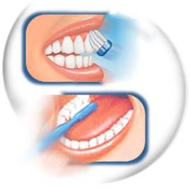 recuerda Cepillar todos los espacion de los dientes