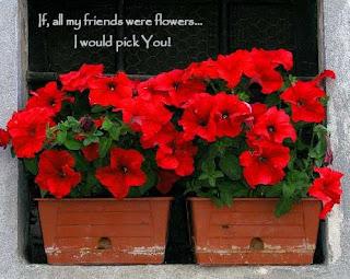 friendship flower cards
