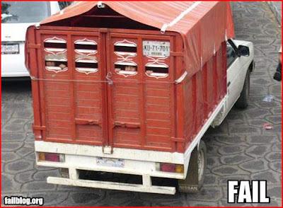 Transporte Escolar Chinês