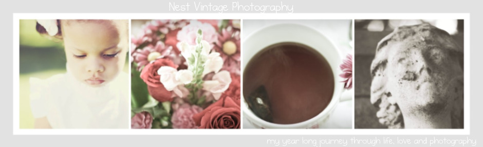 Nest Vintage Photography