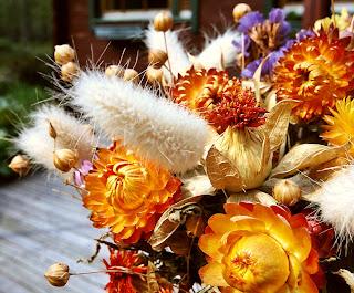 Сухите цветя  Dry_flower