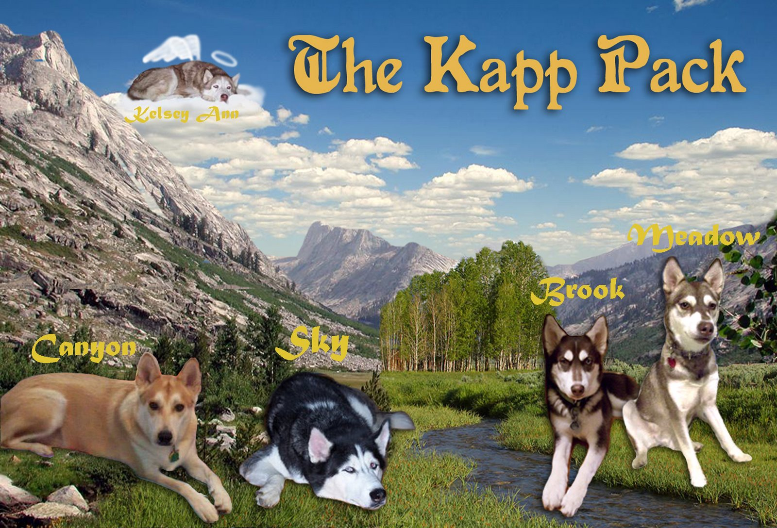 The Kapp Pack