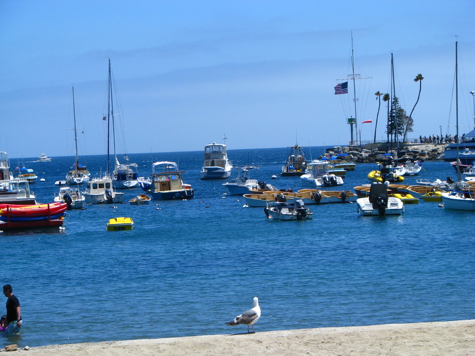 How Long To See Everything On The Catalina Islands
