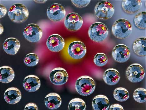 Freezing Bubbles effect