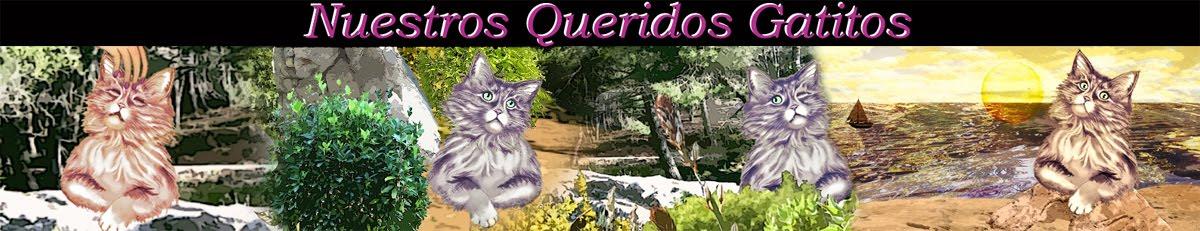 Nuestros Queridos Gatitos
