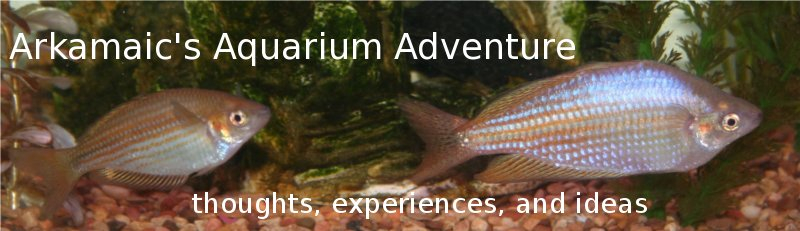 Arkamaic&#39;s Aquarium Adventures