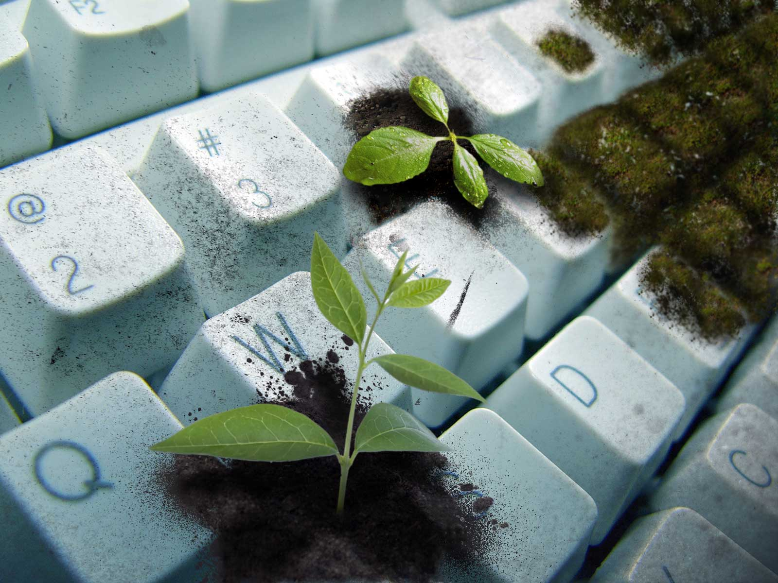 Technology literally devouring nature