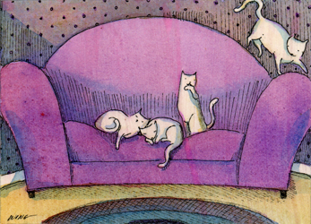 [4+Cats+on+the+Sofa.jpg]