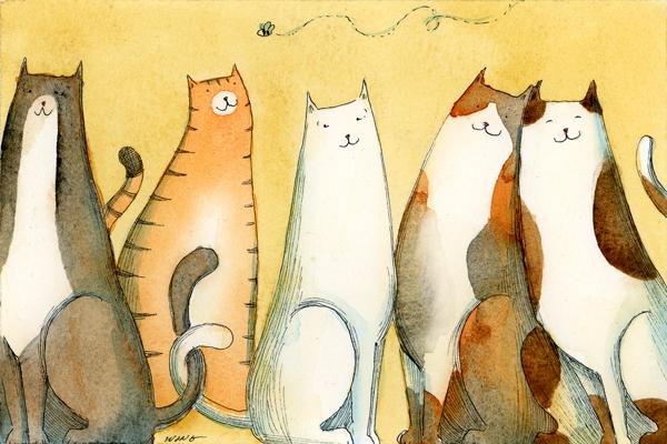 [Cat+Line-up.jpg]