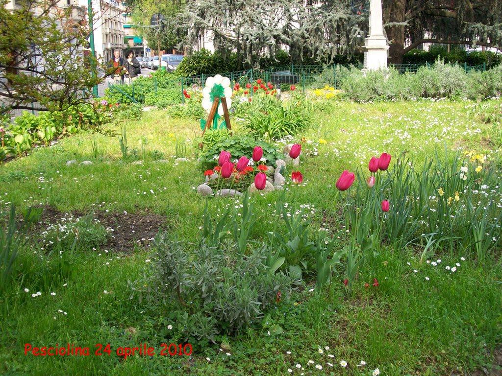 I colori della natura il giardino fiorito for Giardino fiorito