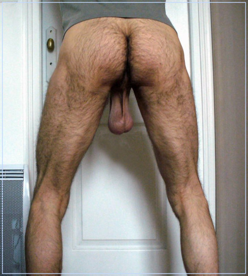 hairy man ass