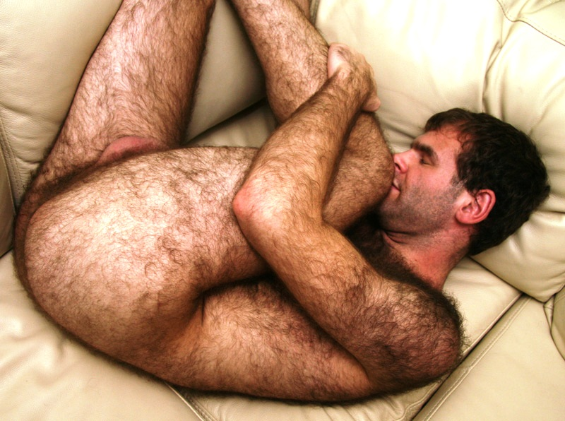 Naked hairy men pictures #4