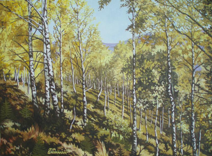 Birch Forest -- Sold
