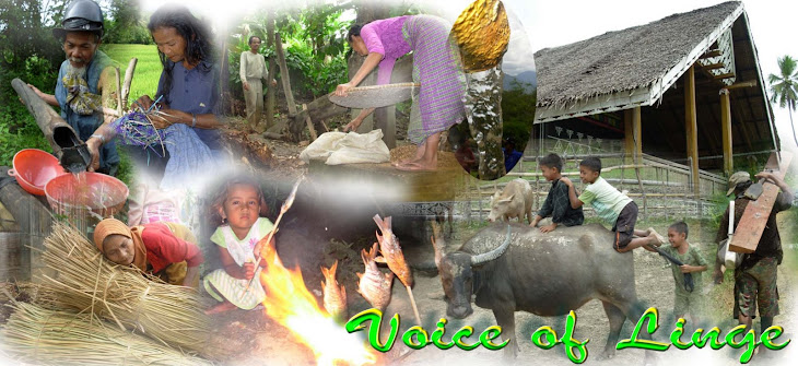 VOICE OF LINGE