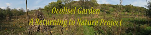 Ocolisel Garden