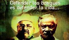 CONDENADOS POR DEFENDER SUS BOSQUES