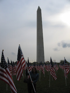 Veteran's Day Flags, DC
