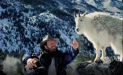 s_marty-stouffer-wild-america-mountain-goat.jpg