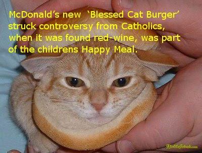 [Image: catburger3.jpg]