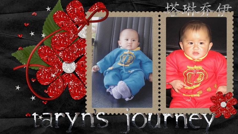 Taryn's Journey