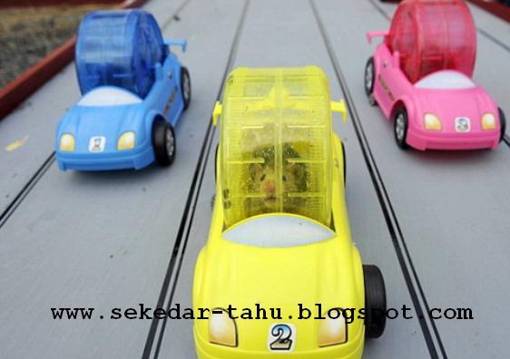 http://4.bp.blogspot.com/_uvGh2J6euuA/THPaauC49TI/AAAAAAAAADQ/vrR0mDtndz0/s1600/1.JPG