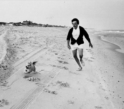 Cane inseguito da Kurt Vonnegut
