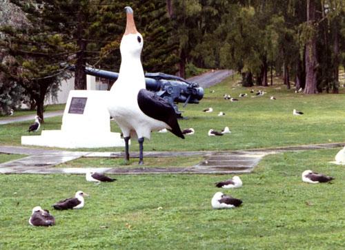 Il déjeuner sur l'herbe degli albatri