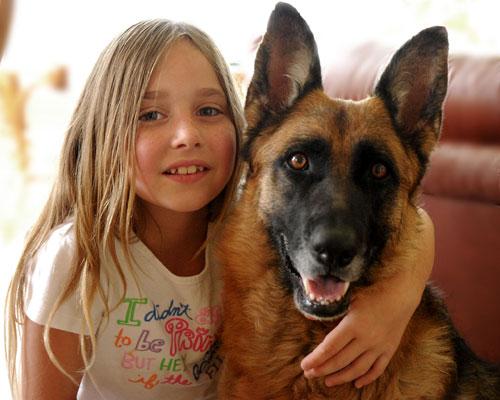 Cane che ha trovato una nuova casa