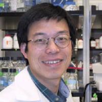 Yi Zhang, Ph.D., Howard Hughes Medical Institute investigator, professor of biochemistry and biophysics, University of North Carolina at Chapel Hill. Credit: University of North Carolina at Chapel Hill.