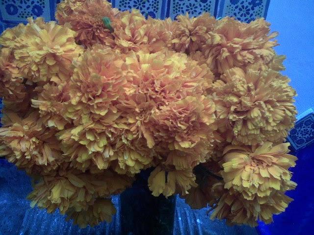 Saborearte entusiasma el color amarillo naranja - Amarillo naranja ...