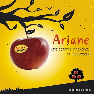Couverture de la plaquette Ariane